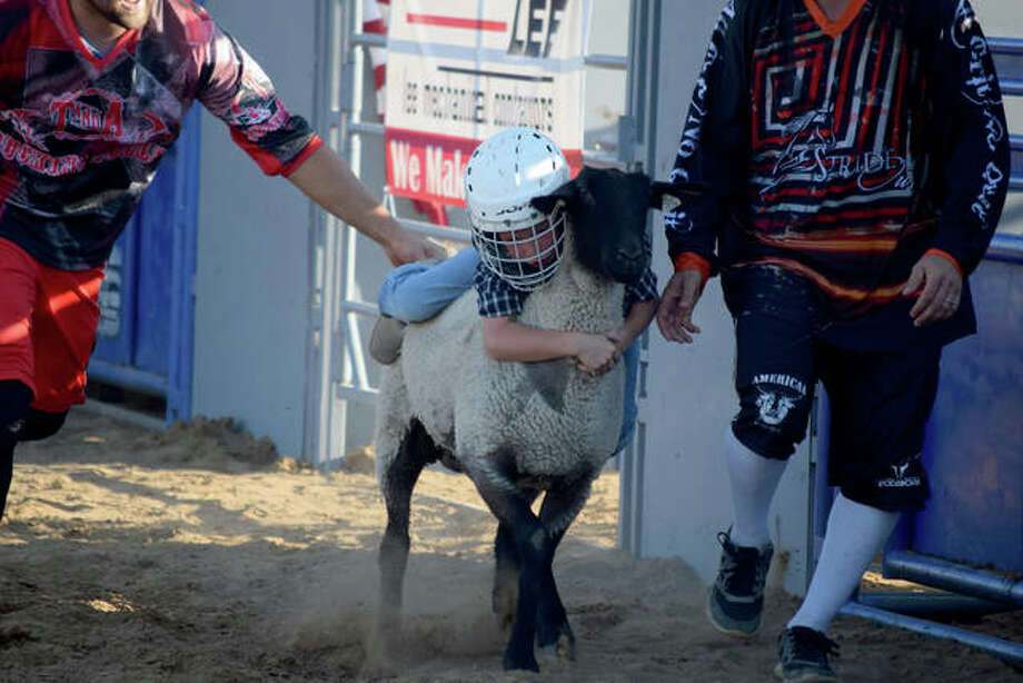 Mutton busting show at the Morgan County Fair. Photo: Marco Cartolano | Journal-Courier