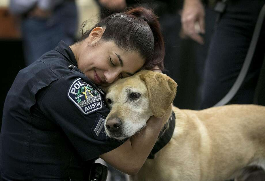 Austin Police Cpl. Lori De la Fuente cuddles Austin Police K9 Raggio, a 10-year-old Labrador retriever, at a retirement party for three Austin police dogs at the Junior League of Austin, Texas. (Jay Janner/Austin American-Statesman/TNS) Photo: Jay Janner, TNS