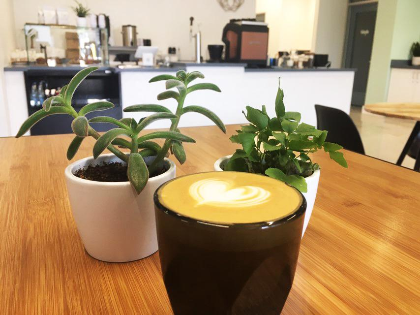 Blüm Coffee and Tea and pastry and coffee shop now open near the San Antonio airport