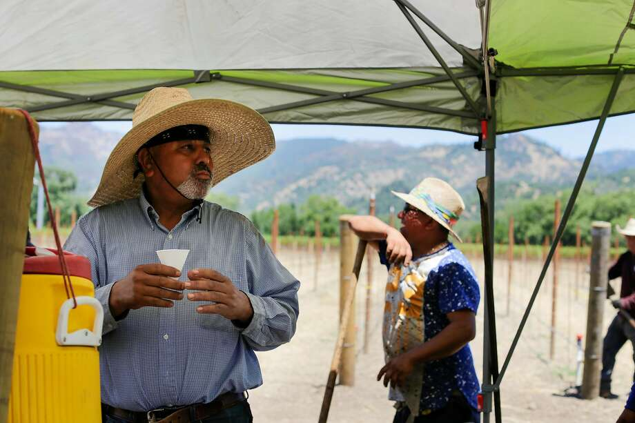 Arturo Logonzo (left) gets some water as he and other vineyard workers take a break from planting grapes along Highway 128 in Calistoga. Photo: Lacy Atkins / Special To The Chronicle