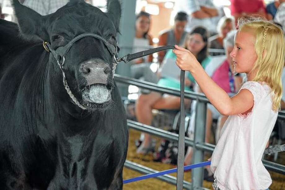 Riley White displays her steer Monday during the 2019 4-H auction at the Morgan County Fairgrounds. Photo: Samantha McDaniel-Ogletree | Journal-Courier