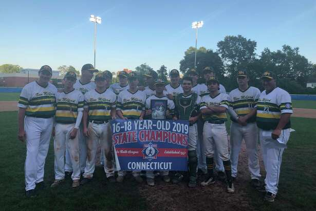 Members of the New Milford 16-18 Babe Ruth team celebrate their state championship victory over Stamford.