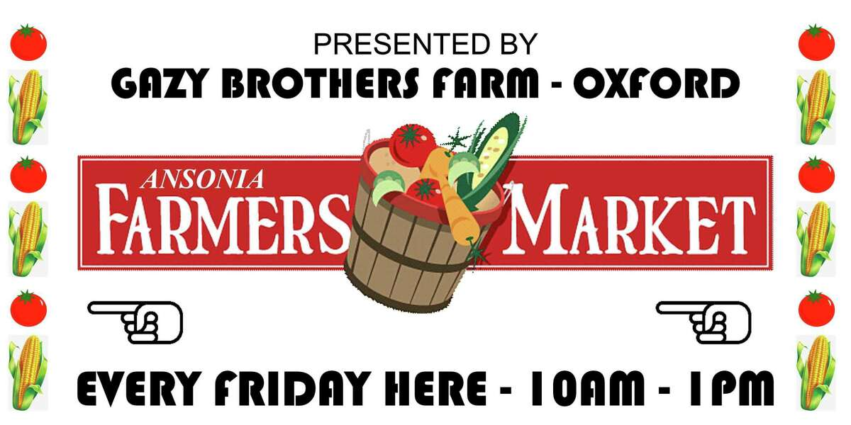 The farmers market will make its debut at 10 a.m. Friday in the park across from the Doyle Senior Center on Main Street.