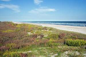 Edged by swirling, colorful dunes, the 18 mile beach on Mustang Island allows cards to traverse its lengths. Photo courtest of Port Aransas CVB