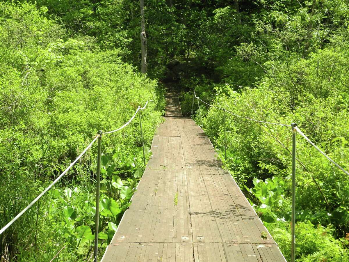 A free hike along Woodcock Nature Center's trails is planned for Thursday, Nov. 19.