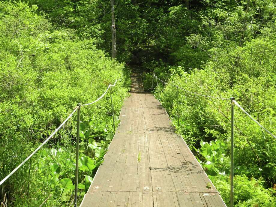 A free hike along Woodcock Nature Center's trails is planned for Saturday, Aug. 3, 2019, in Wilton, Conn. Photo: Contributed Photo / Wilton Bulletin