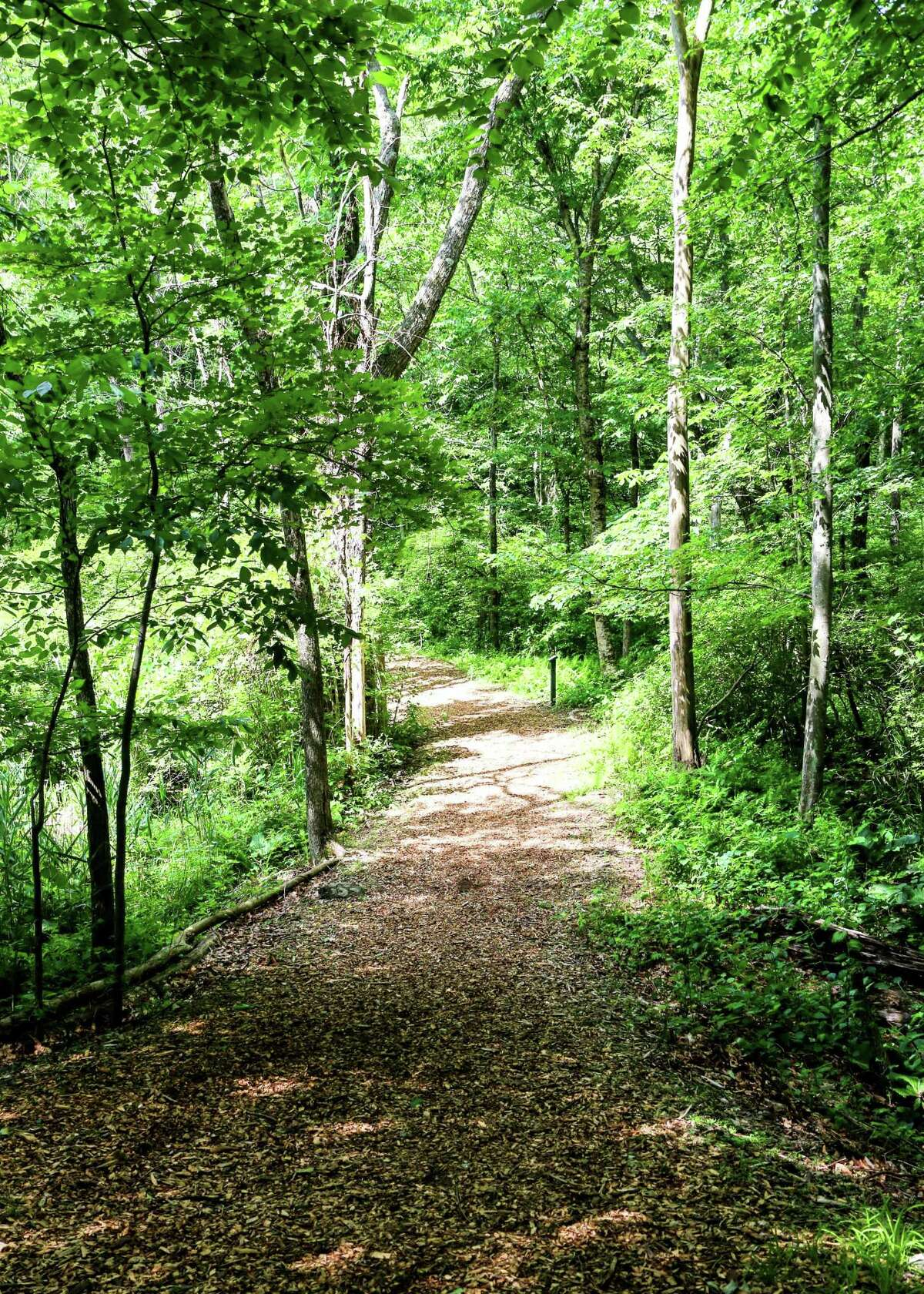 Woodcock Nature Center is offering a Frothy Forage - hiking with beer tastings - on Oct. 19.
