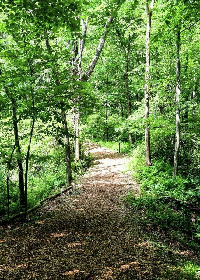 Woodcock Nature Center is offering a Frothy Forage — hiking with beer tastings — on Oct. 19. Photo: Picasa / / Wilton Bulletin