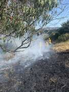 Firefighters responded Wednesday to a fire in McLaren Park.
