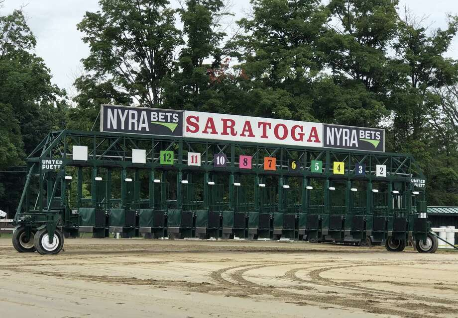 And they're off at Saratoga! Actually, they have been off for five days already. This is the iconic Saratoga starting gate, which rested at the chute going into the backstretch. That's where it is during the mornings when horses train. It gets  plenty of use during the afterrnoon. Oh, if this gate could talk, the stories it could tell about the horses from history that spent a few seconds in it. (Tim Wilkin / Times Union)