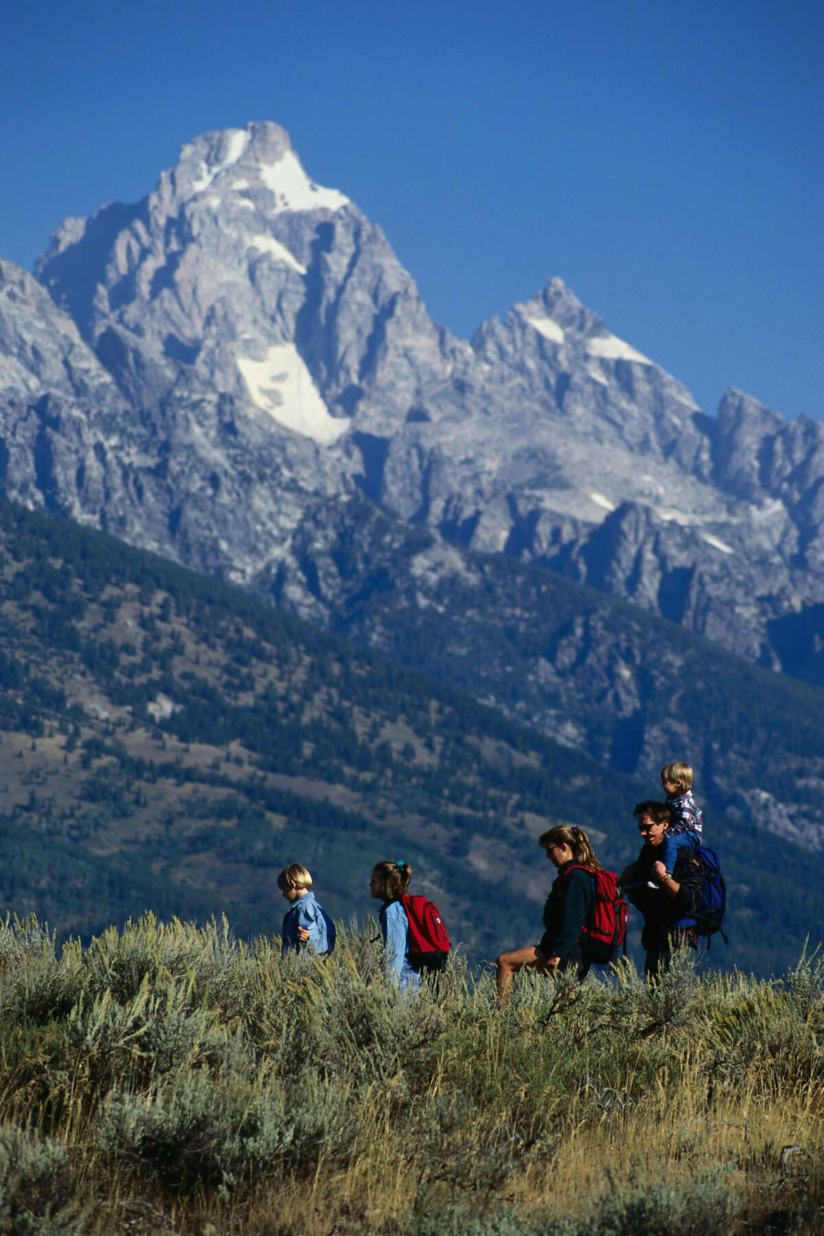 42. Wyoming 'Children & Teenagers Immunization Rates' Rank: 46 'Adult & Elderly Vaccination Rates' Rank: 41 'Immunization Uptake Disparities & Influencing Factors' Rank: 9