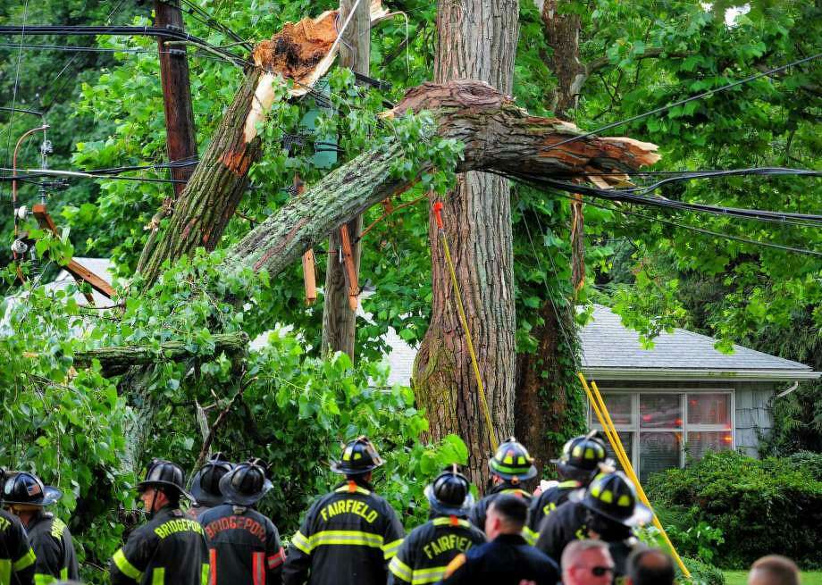 A view of a tree which fell on vehicle along Park Avenue on Wednesday, July 17. Due to live wires that fell, Bridgeport and Fairfield firefighters had to wait as long as an hour before they could remove the victim who was trapped inside. Photo: Christian Abraham / Hearst Connecticut Media / Connecticut Post