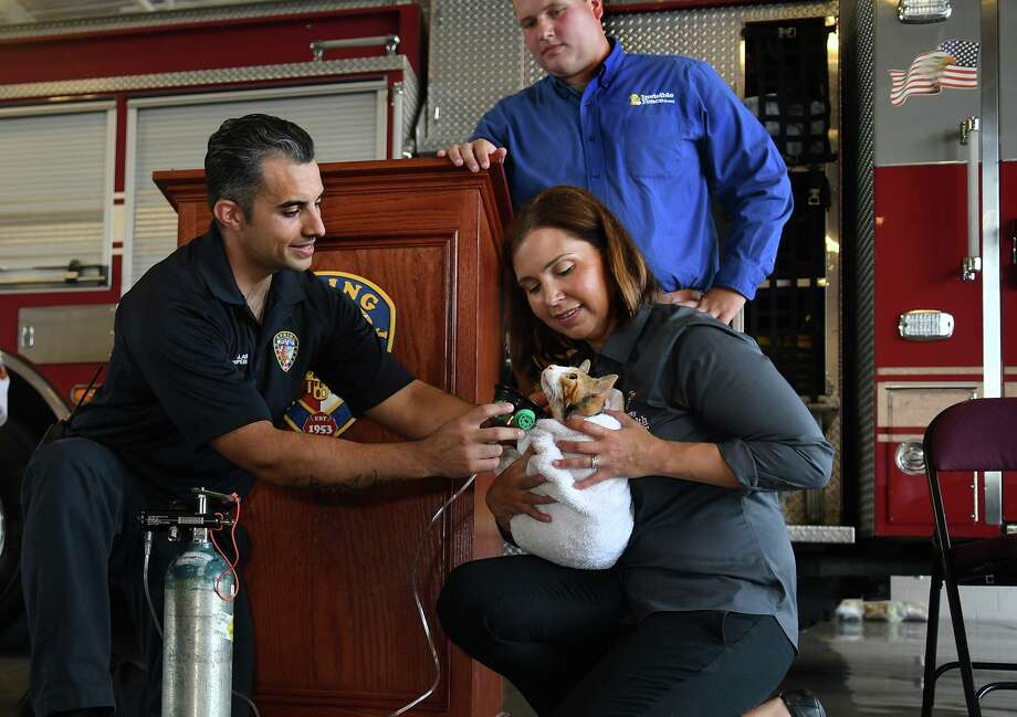 "Spring Fire Dept. Apparatus Operator Michael Alaniz, left, teams up with ""Pumpkin"", a kitten available for adoption from the Harris County Animal Shelter, and Kerry McKeel, right, from the HC Animal Shelter, for a demonstration during the press conference for the introduction of Fire and EMS Departments, including Spring Fire Dept., Cypress Creek EMS, Tomball Fire Dept., and Northwest Community Health, receiving pet oxygen masks held at Spring Fire Station 71 on July 17, 2019. Photo: Jerry Baker, Houston Chronicle / Contributor / Houston Chronicle"