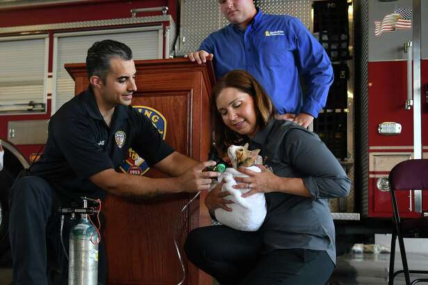 """Spring Fire Dept. Apparatus Operator Michael Alaniz, left, teams up with """"Pumpkin"""", a kitten available for adoption from the Harris County Animal Shelter, and Kerry McKeel, right, from the HC Animal Shelter, for a demonstration during the press conference for the introduction of Fire and EMS Departments, including Spring Fire Dept., Cypress Creek EMS, Tomball Fire Dept., and Northwest Community Health, receiving pet oxygen masks held at Spring Fire Station 71 on July 17, 2019."""