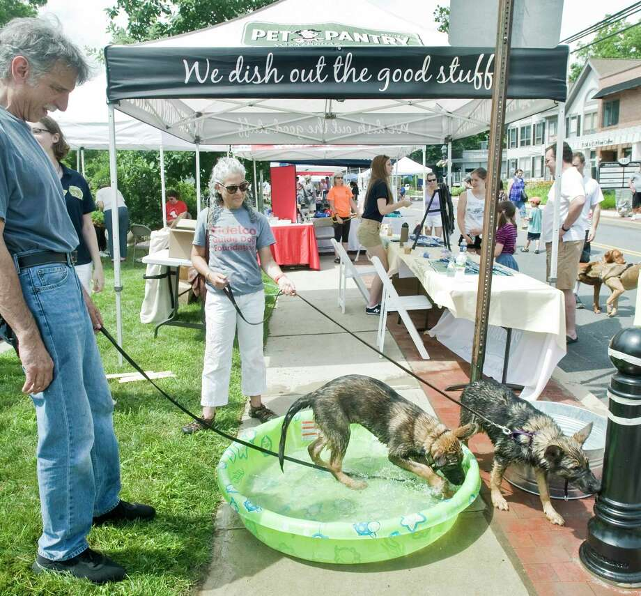 A couple of happy dogs found a way to beat the heat at last year's Street Fair and Sidewalk Sale in Wilton. Photo: SCOTT MULLIN / Scott Mullin ownership