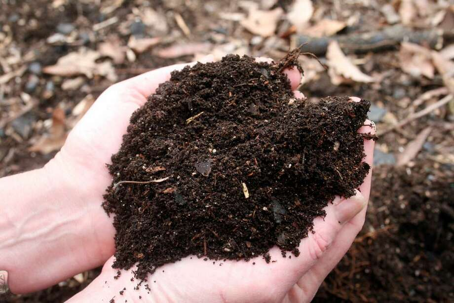Composting transforms food waste into nutrient-rich soil. Photo: Photo Courtesy Of AP
