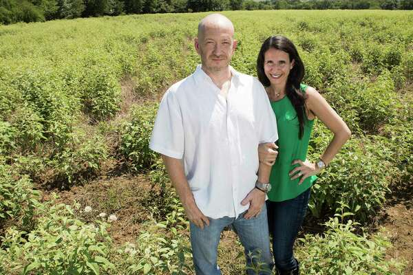 Will anyone fund Texas' hemp industry? Entrepreneurs struggling to
