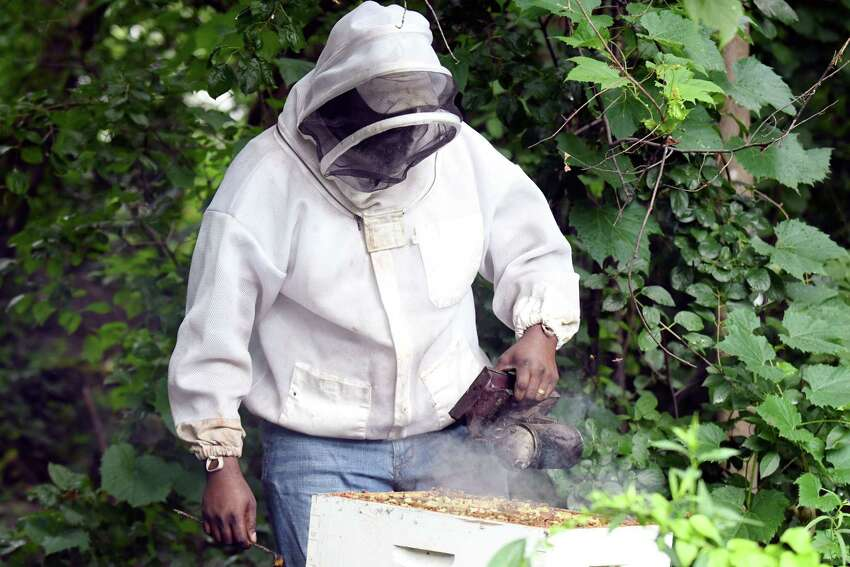 Graig Moore, beekeeper at Radix Ecological Sustainability Center, smokes a beehive on Monday, July 22, 2019, in Albany, N.Y. (Catherine Rafferty/Times Union)