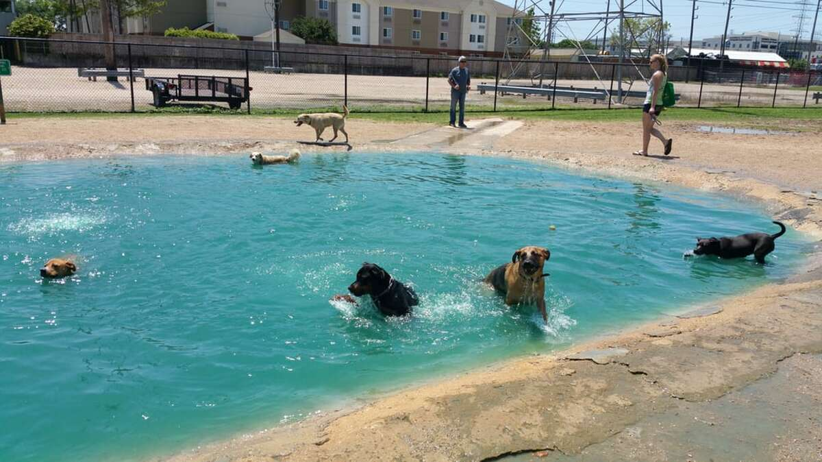 """Danny Jackson Dog Park 4828 1/2 Loop Central Dr, Houston, TX 77081 """"Besides Justin Bieber's face, the thing that makes me cringe most is watching a dog hump another dog. And unfortunately, I tend to cringe a lot here,"""" Sarah K. said."""