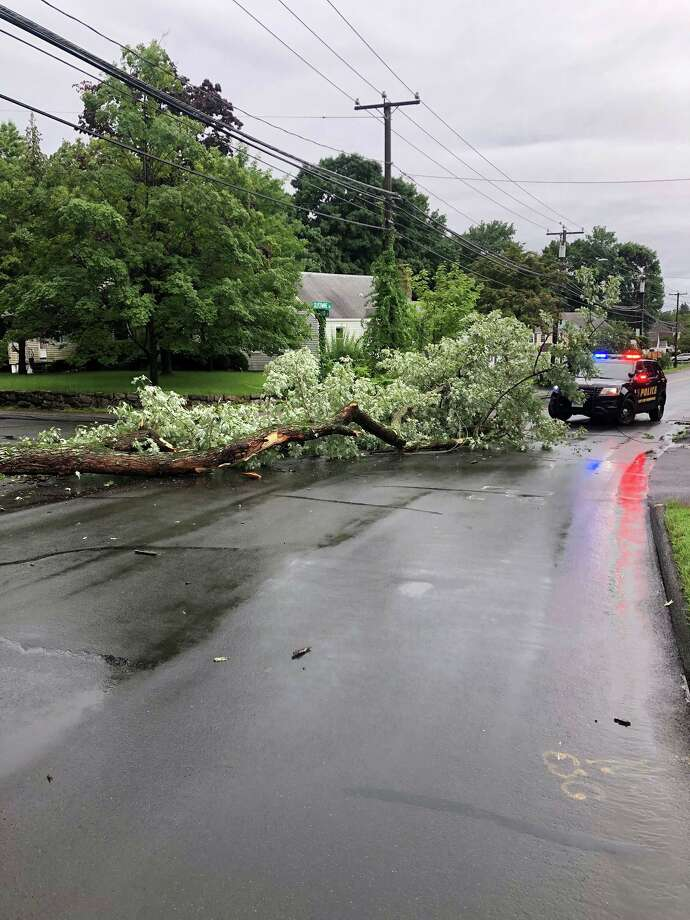 Silvermine Avenue has opened to traffic again after a downed tree branch was cleared from the road Tuesday morning. Photo: Courtesy Of The Norwalk Police Department