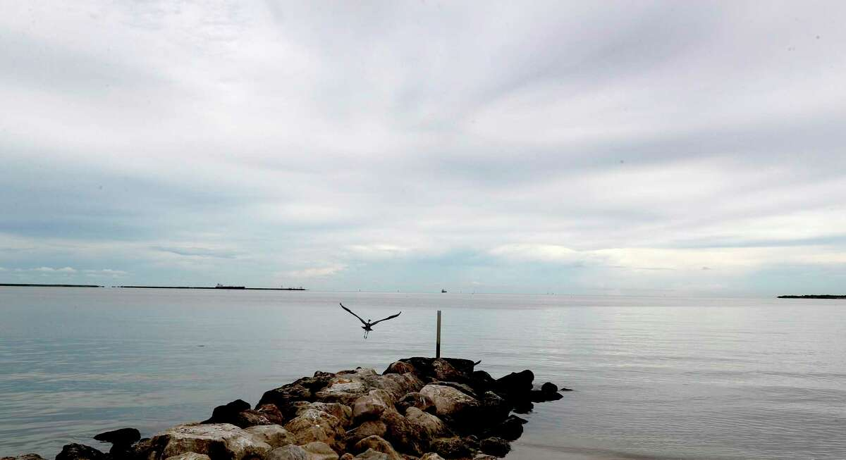 A heron surveys the water for it's next meal, after a brief rainstorm at Sylvan Beach on Monday, September 10, 2018, in La Porte. Last year, 141 beaches across the state, including Sylvan Beach in La Porte, had water pollution levels that put swimmers at risk of getting sick on at least one occasion last year, according to a new report by Environment Texas Research and Policy Center.