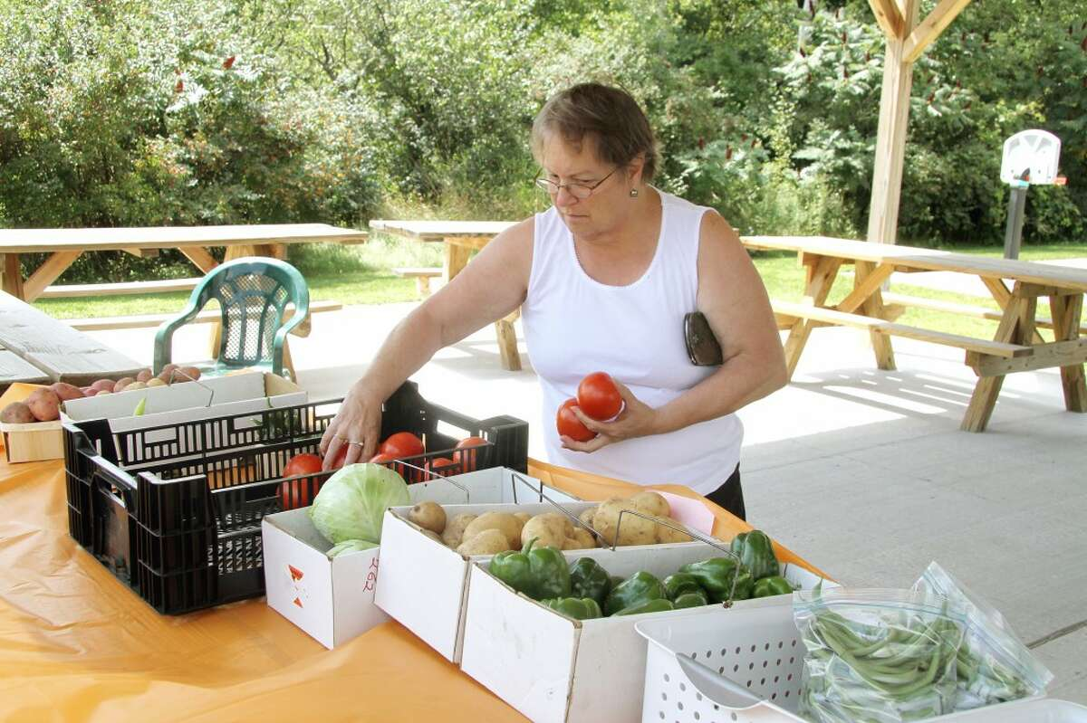 """photo_credit="""""""" FRESH PRODUCE: Mary Kay Anderson of Big Rapids picks out some tomatoes on Thursday at the Green Township Farmers Market. Proceeds from the market will benefit the township's parks. (Pioneer photo/Jonathan Eppley)"""