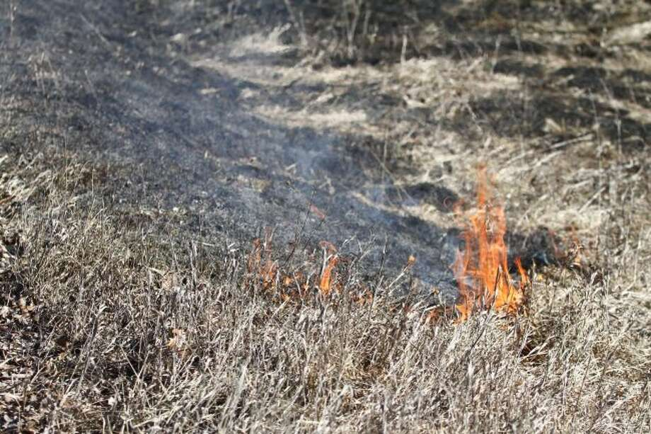A patch of grass burns along the side of 7 Mile Road in February in Austin Township. Grass fires can spread rapidly because of current dry conditions. (Pioneer file photo)