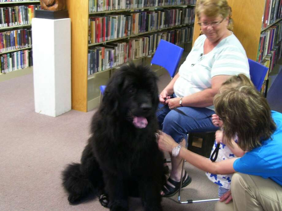DIG INTO READING: Kathy Baumann brought her therapy dog to Wheatland Township Library's summer reading program kick off on Thursday. (Courtesy photo)