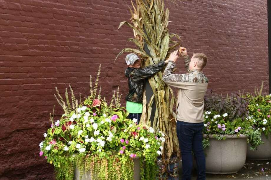 FESTIVE POCKET PARK: Brogan Jones (left) and Christian Ramsvig (right) tie corn stalks to posts in Pocket Park as part of St. Peter's Lutheran School's community service project. (Pioneer photos/Meghan Haas)