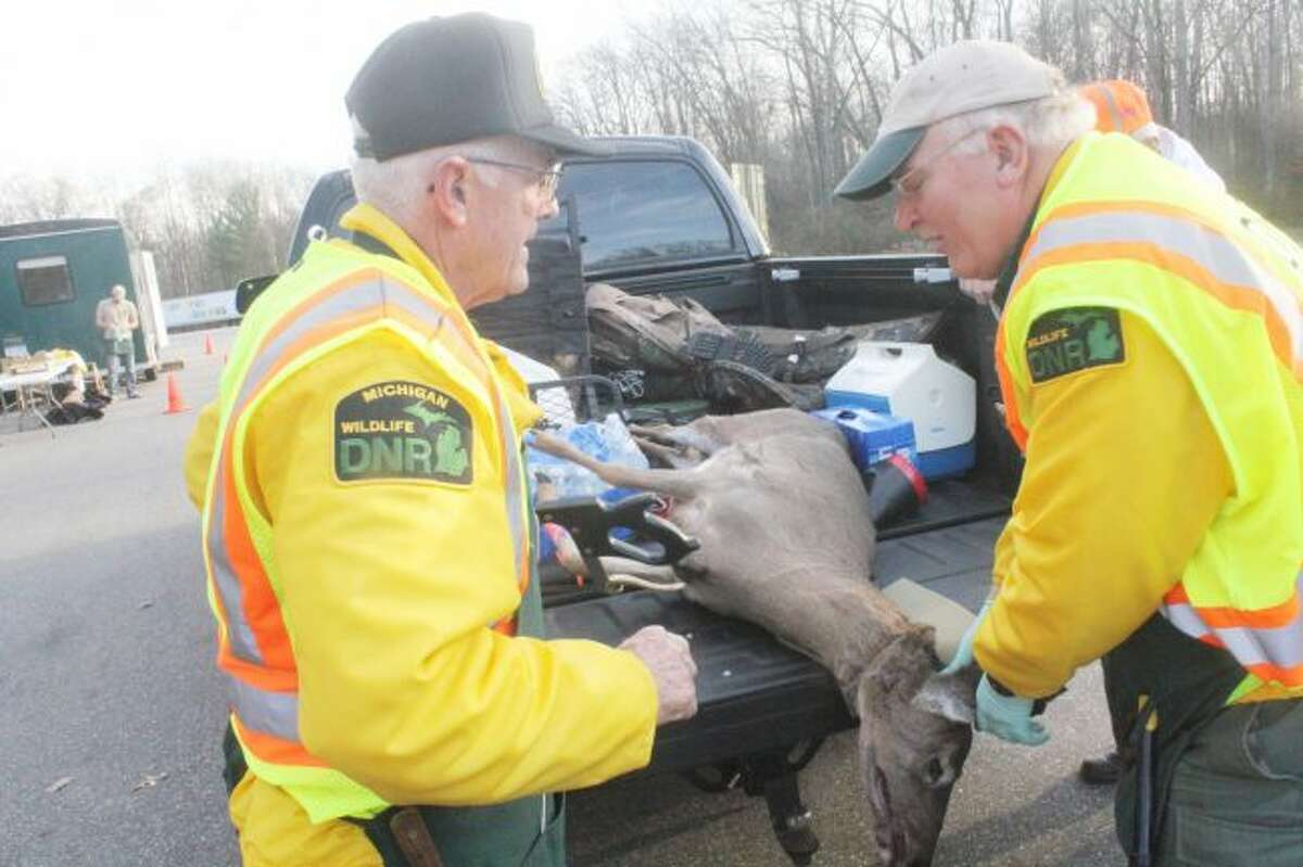 Jeff Greene and Pete Kailing check a deer Thursday at a DNR check station south of Big Rapids. (Pioneer file photo)