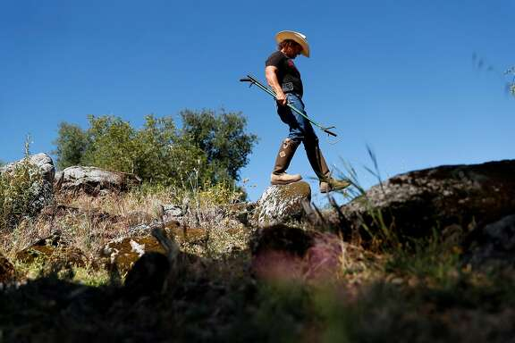 Len Ramirez of Ramirez Rattlesnake Removal searches for rattlesnakes at a ranch in Napa, Calif., on Saturday, June 22, 2019.
