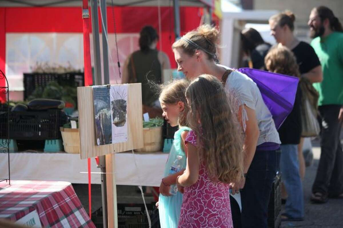 The second annual Farmers Market Book Walk takes place from 11 a.m. to 1 p.m., on Friday, Aug. 9. The event will focus on teaching children about reading and healthy eating at an early age. (Pioneer file photo)