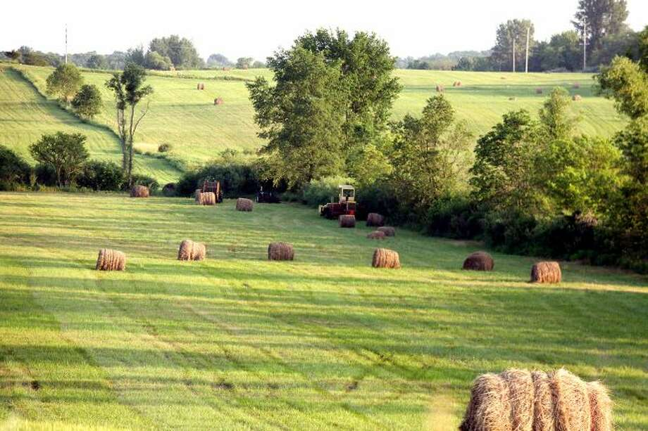 Farmers in Mecosta and Osceola counties are facing a potential feed shortage after an unusually dry summer has resulted in a low hay supply for the cutting season. As feed prices rise accordingly, farmers are becoming increasingly financially stressed. (Pioneer file photo)