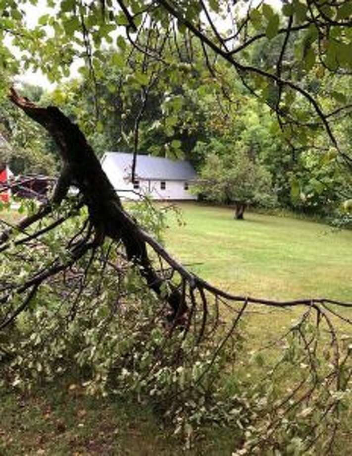 Storms in the Mecosta County area on Sunday night and early Monday morning took out trees and dumped 2 to 3 inches of rain in some areas. Pictured is a downed tree on Carlleen Rose's Colfax Township property. (Courtesy photo)
