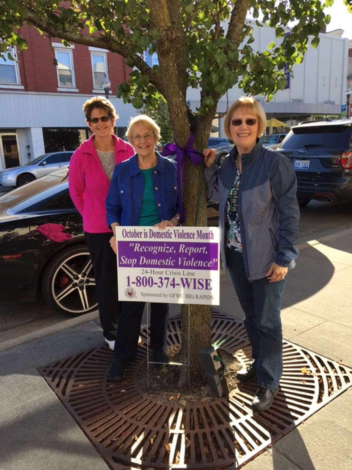 Last year, members of the Big Rapids branch of the General Federation of Women's Club (from left) Beth Martz, Melanie Henry and Dee Van Horn tied purple ribbons to trees in the community in observance of October as Domestic Violence Awareness month. On Monday, Oct. 8, members of GFWC, Zonta Club of Big Rapids and Women's Information Service, Inc. will participate in the Purple Ribbon Campaign by tying small ribbons on trees and shrubs throughout Big Rapids. (Courtesy photo)
