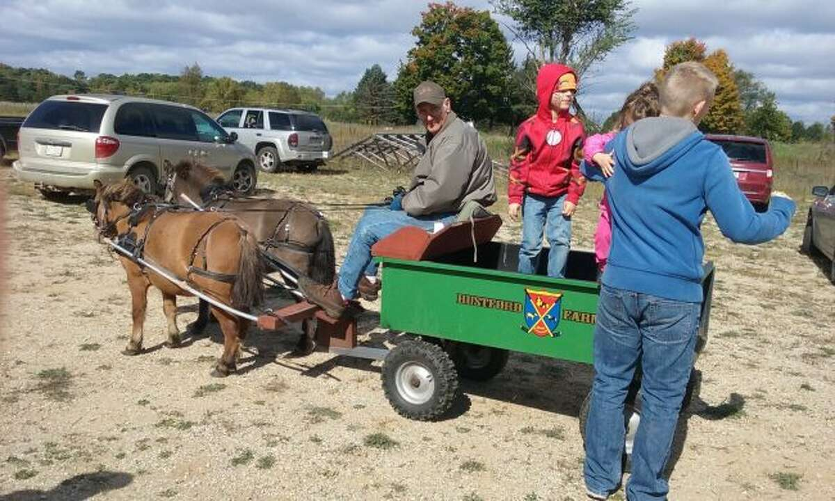 Alvin and Judy Garnett bring their two miniature horses and cart to give pony rides at the Family Fall Festival. (Courtesy photo)