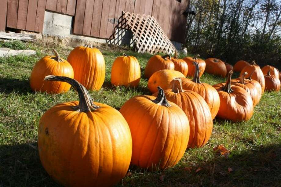 Big Rapids Township firefighters will be at the station Saturday to carve and paint pumpkins. The event is free and open to the public. (Pioneer photo/Candy Allan)