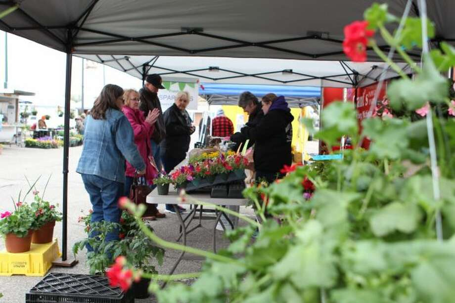 A wide range of flowering plants greeted green thumbs during the opening Big Rapids Downtown Farmers Market Friday morning. While still early in the growing season, there were some vegetables available. (Pioneer photo/Brandon Fountain)