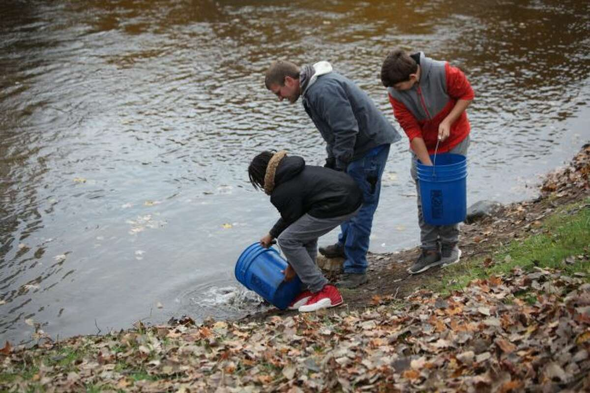 Big Rapids Middle School sixth-graders in Darin Hooker's science class helped release more than 300 rainbow trout into the Muskegon River on Thursday. The stocking of the fish was made possible by an anonymous donation to the Mecosta County Community Foundation. (Pioneer photos/Taylor Fussman)