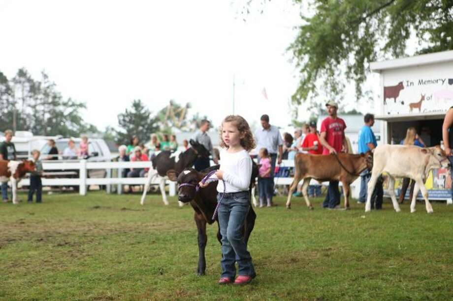 In addition to learning about animal science and participating in the county fair, youth involved with Osceola County 4-H participate in community service projects, arts and crafts activities and much more. To learn more about what is offered through the local 4-H program, children and families are invited to the annual fall round-up on Sunday, Sept. 29. (Pioneer file photo)