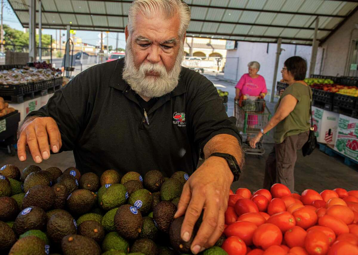 General Manager Gilbert Weaver sorts avocados at Chicho Boys Fruit Market. The fruit is a year-round favorite for San Antonians, but only 40 years ago, they were just a seasonal treat.