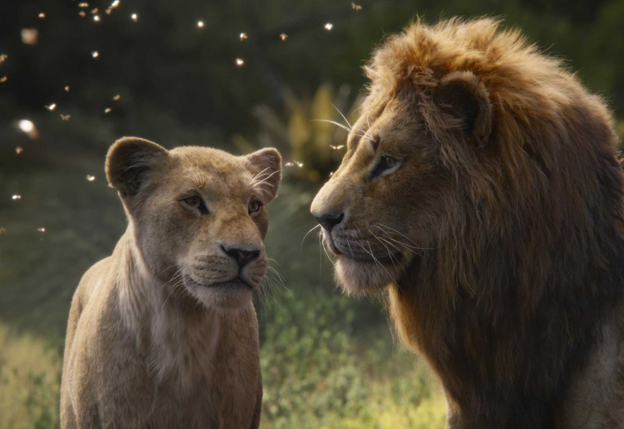 Now streaming: 'The Lion King' on digital today