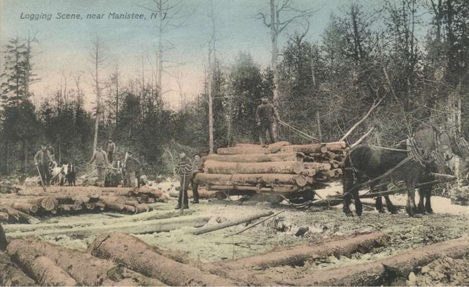 This hard working logging crew stops form its task to pose for a picture.
