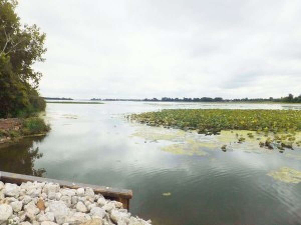 Courtesy photo/The Nature ConservancyErie Marsh has been cut off from Lake Erie since the 1940s. The Nature Conservancy is changing that.