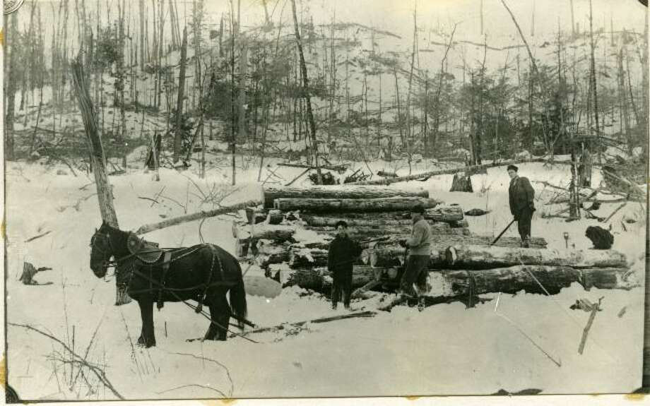 A group of lumberjacks go about their daily tasks working in the forest to cut trees and prepare the logs for shipment to the sawmill.