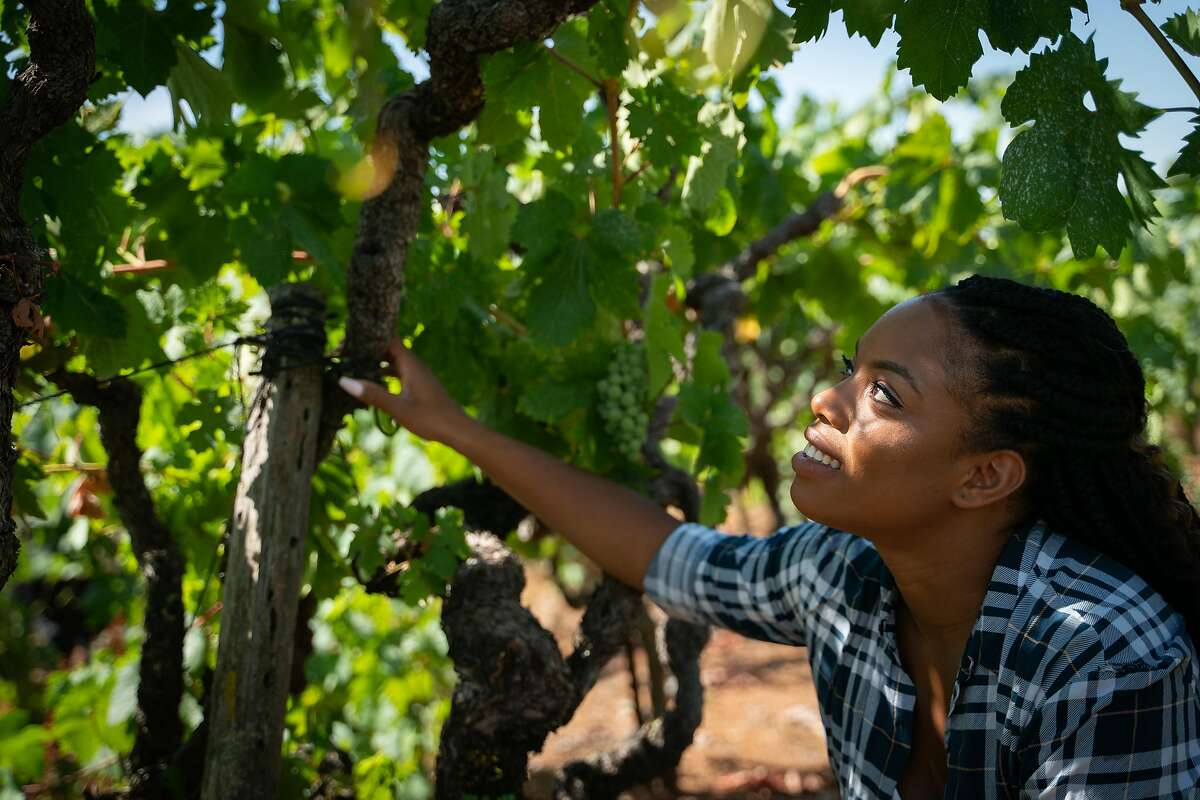 29-year-old Brenae Royal oversees the farming at the historic Monte Rosso Vineyard in Sonoma.