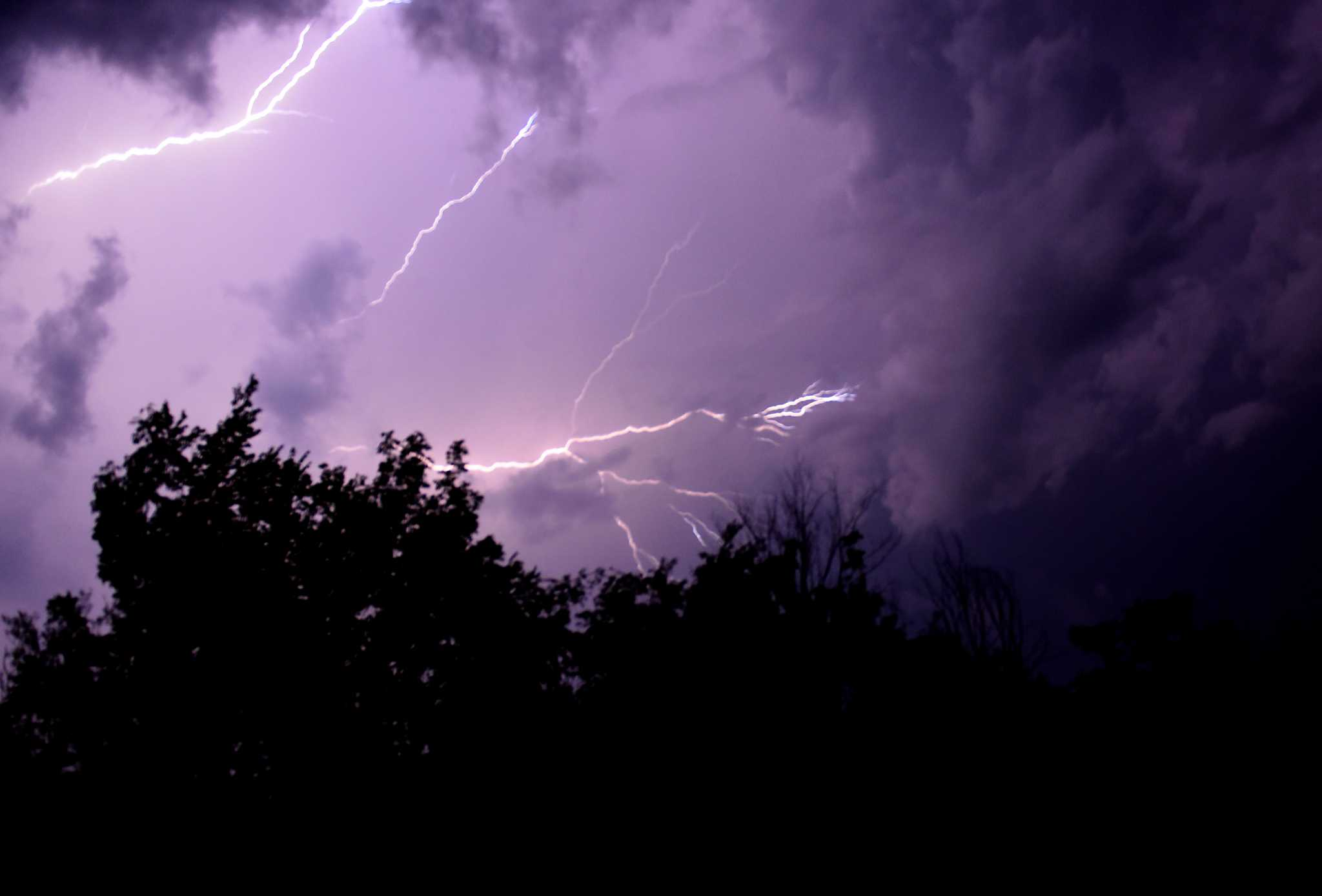 Jason Gough's forecast: Mild morning, afternoon storms and Meatloaf