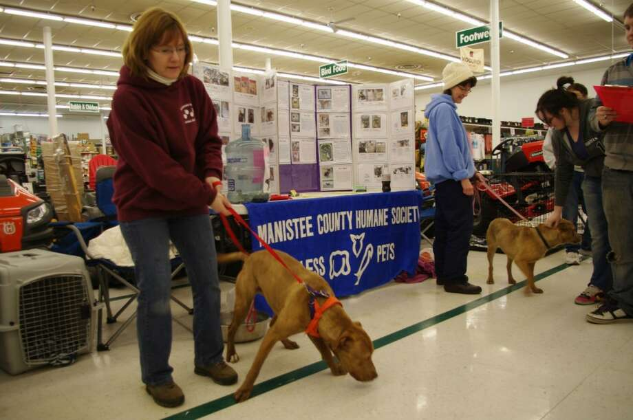 On the first Sunday of every month, the Homeward Bound Animal Shelter holds an adopt-a-thon at Manistee's Family Farm & Home Store from 10 a.m. to 2 p.m. Here volunteers Colleen Kenny (left) and Lisa Rollin hold dogs. (Dave Yarnell/News Advocate)