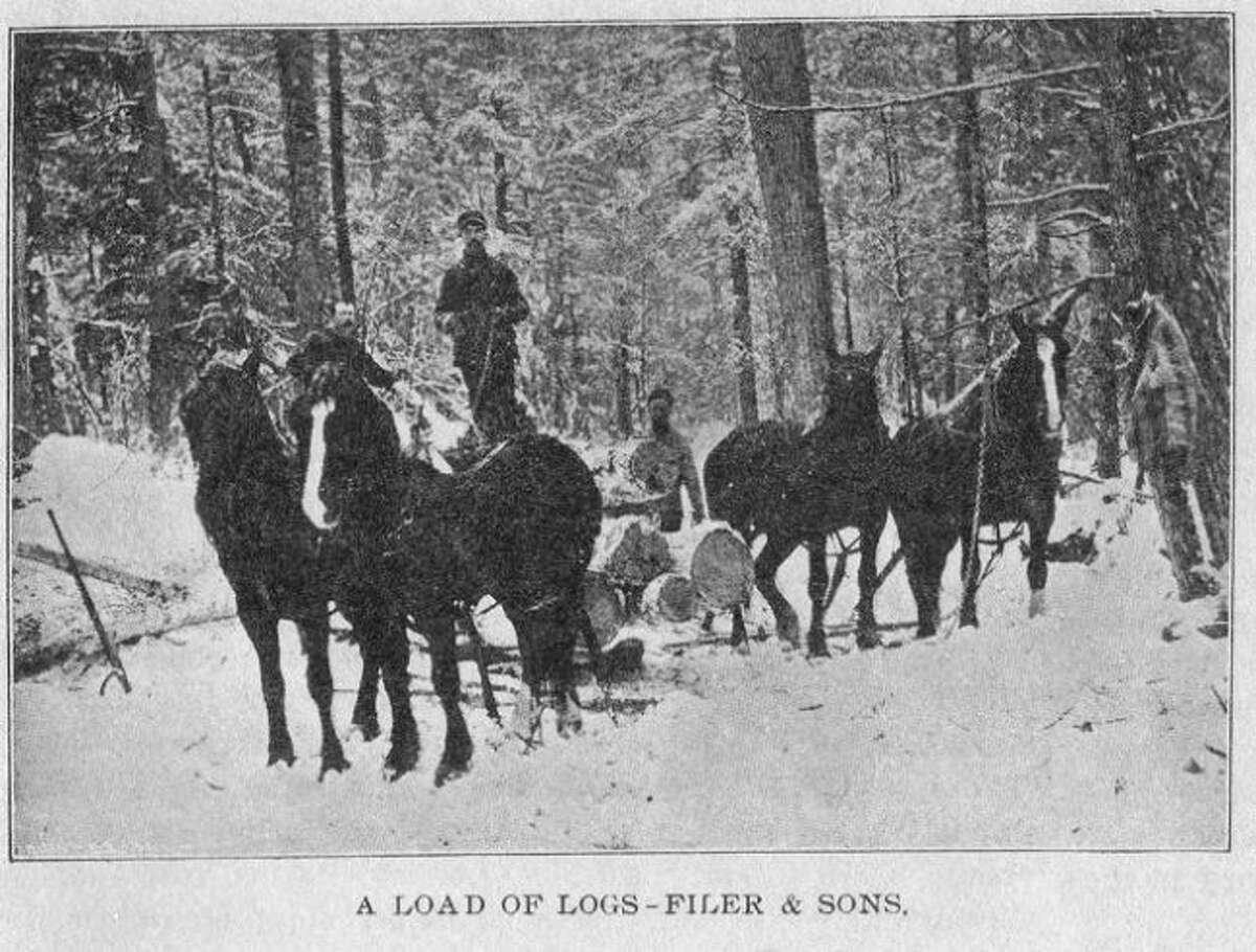 A load of logs from the Filer and Sons Company is shown making its way to the sawmill in this 1880s photograph.