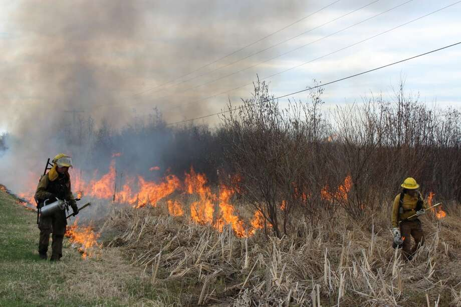 Employees from the ecological restoration company Plantwise patrol the edge of the controlled burn. The Grand Traverse Regional Land Conservancy hired Plantwise to perform the burn of the marsh in Arcadia on Sunday. (Colin Merry/Pioneer News Network)